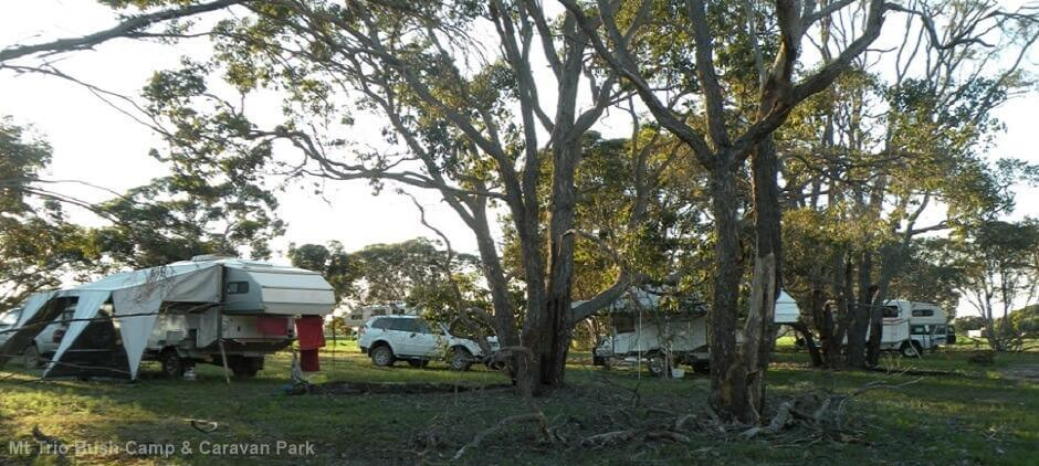 Mt Trio Bush Camp & Caravan Park