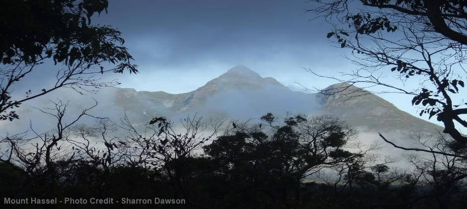 Mount Hassell - Photo Credit - Sharron Dawson